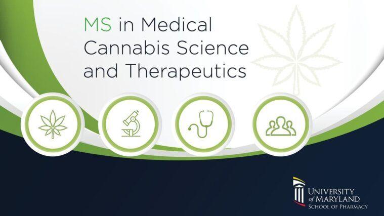 University of Maryland Pharmacy School Cannabis Program Medical Cannabis Branding