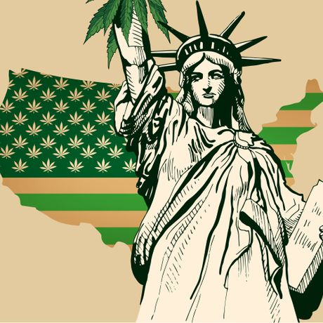 We Are The World: The United Colors Of Cannabis