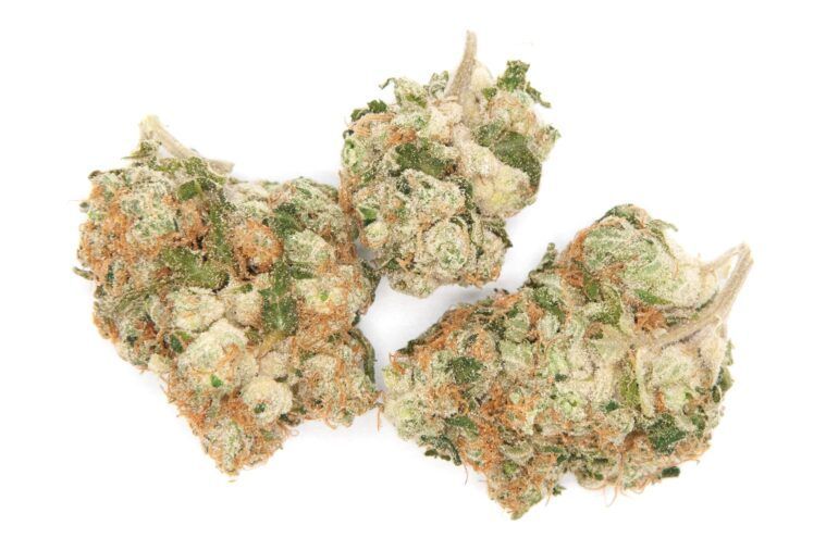 MK Ultra from Curio Wellness at Four Green Fields
