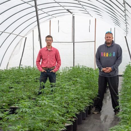 Frontier CBDs is Poised to Become Alaska's First Outdoor Hemp Grow