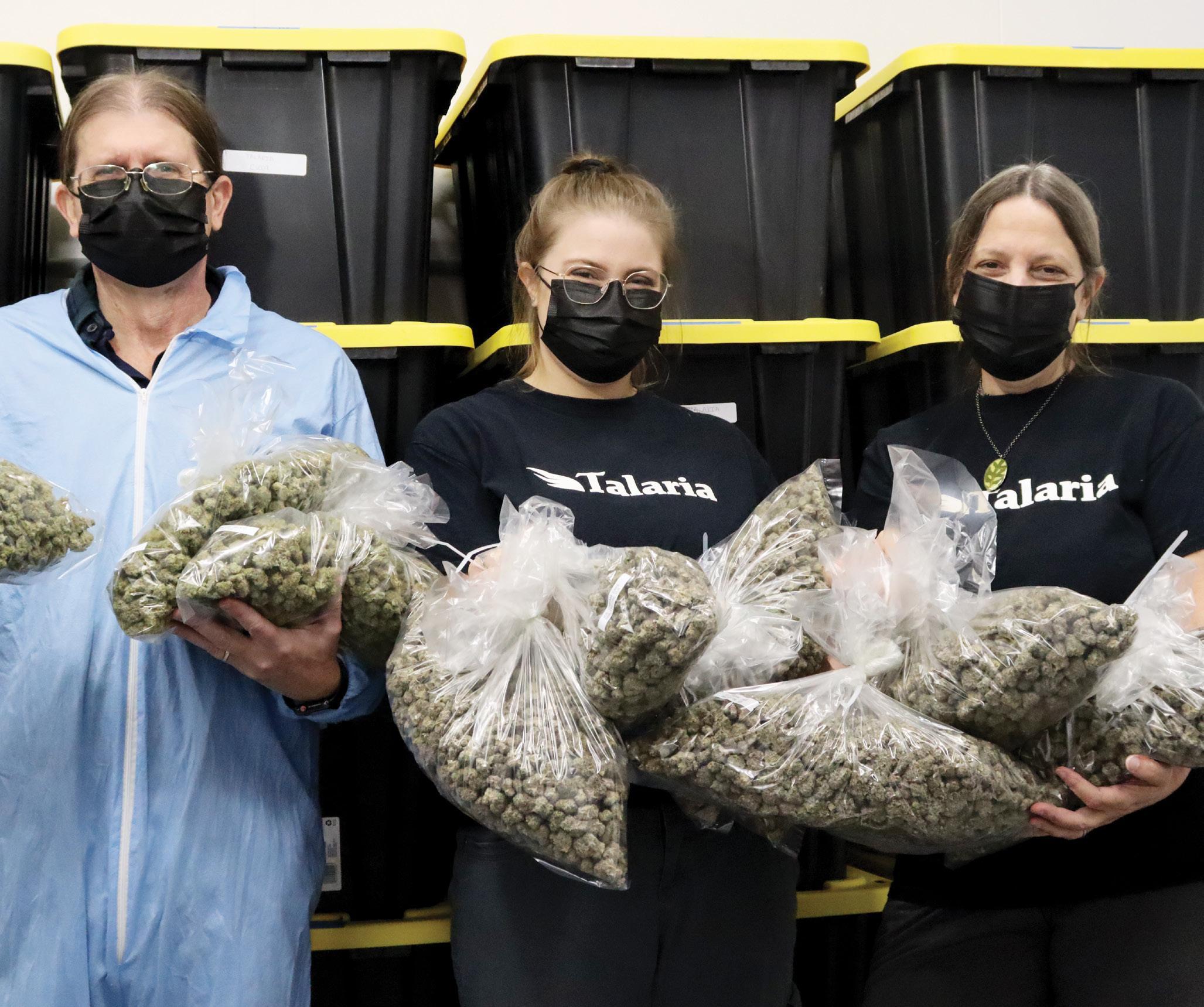 Talaria Co. Family-Run Grow Farm Rhode Island